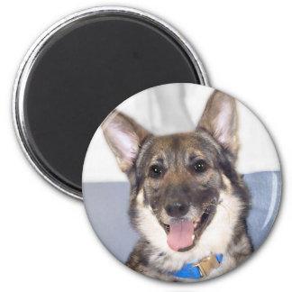 Purebred German Shephered Dog Photo 2 Inch Round Magnet