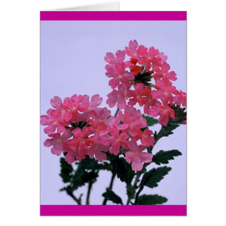 Purely Pink Card