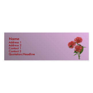 Purely Pink Mini Business Card