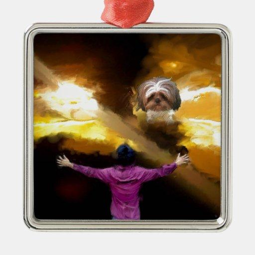 purifique adornos