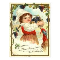 Puritan Girl Picking Grapes Postcard