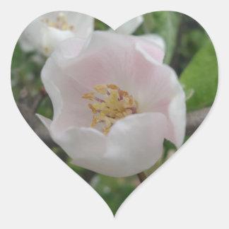 Purity Heart Sticker