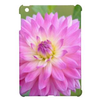 Purity iPad Mini Cases
