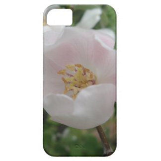 Purity iPhone 5/5S, Barely There iPhone SE/5/5s Case