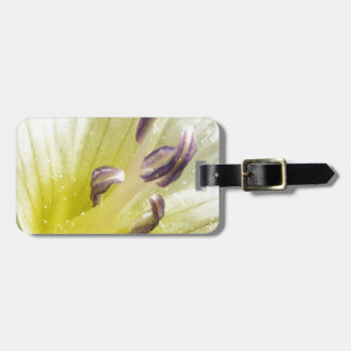 Purity Luggage Tag
