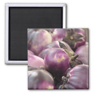 purple 2 inch square magnet