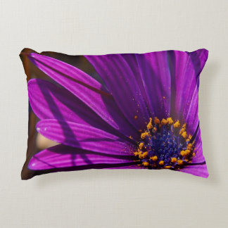 Purple African Daisy Close Up Accent Pillow