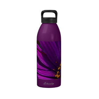 Purple African Daisy Close Up Reusable Water Bottles