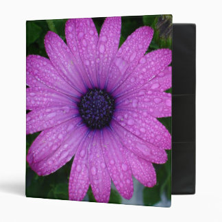 Purple African Daisy with Raindrops Binder