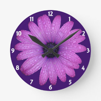 Purple African Daisy with Raindrops Isolated Round Clock
