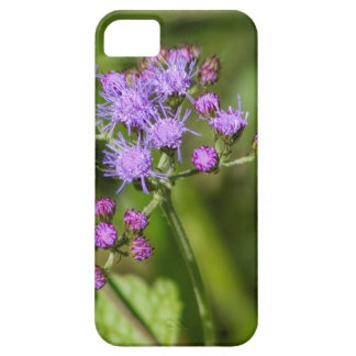 Purple Ageratum Wildflowers iPhone SE/5/5s Case