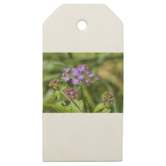 Purple Ageratum Wildflowers Wooden Gift Tags