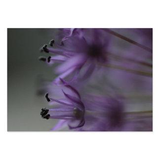 Purple Allium Business Cards