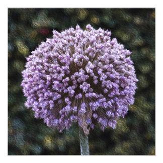 Purple Allium  Invitation Announcements