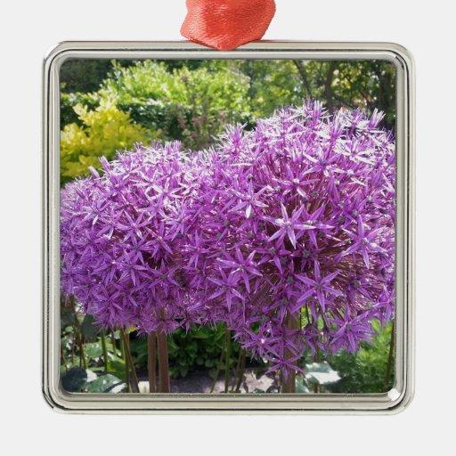 Purple Allium Ornamentos Para Reyes Magos