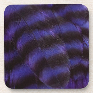 Purple and Black Feathers Coaster