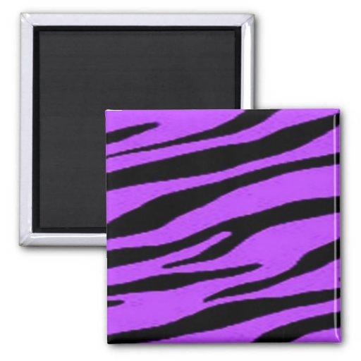 Purple and Black Zebra Magnets