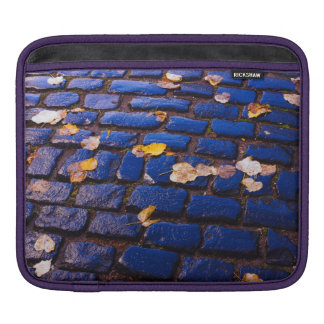 Purple and Blue Cobblestone Street Sleeves For iPads