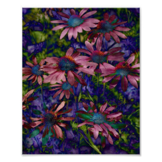 Purple And Blue Cone Flowers Poster