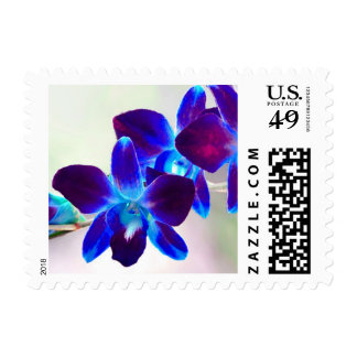 Purple and Blue Dendrobium Orchid Postage Stamps