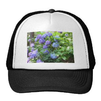 Purple and blue Hydrangea flowers Trucker Hat
