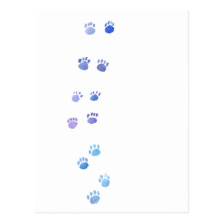 Purple and Blue Kitty Paw Prints Postcard
