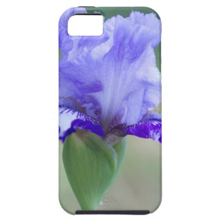Purple and Blue Tall Bearded Iris Bloom iPhone SE/5/5s Case