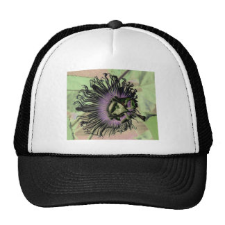 Purple and Green Passion Flower Bloom Trucker Hat