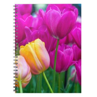 Purple and orange tulips notebook