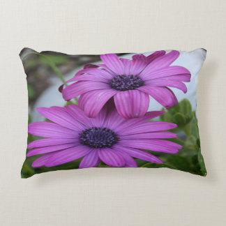 Purple and Pink African Daisy Flowers Decorative Pillow