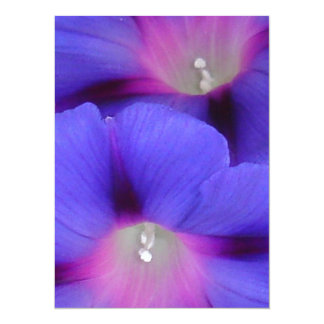 Purple and Pink Colored Morning Glory Flowers 5.5x7.5 Paper Invitation Card