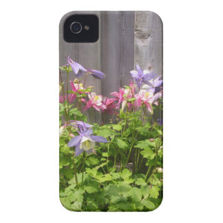 Purple and Pink Columbines Case-Mate iPhone 4 Cases