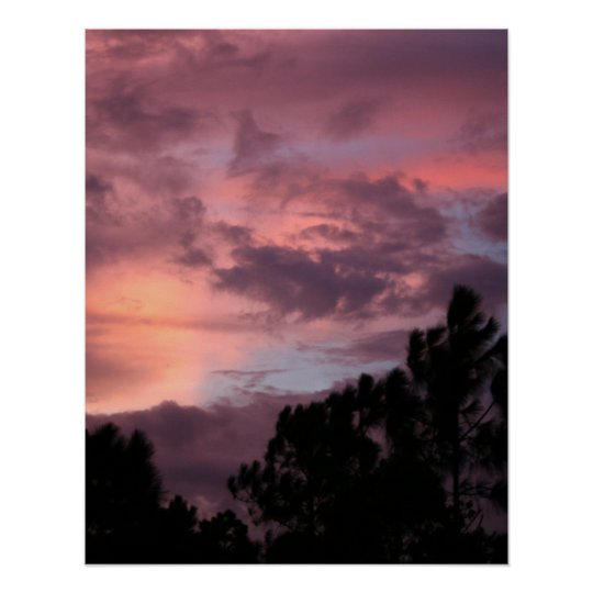 Purple and Pink Florida Sunset over Pine Trees Poster