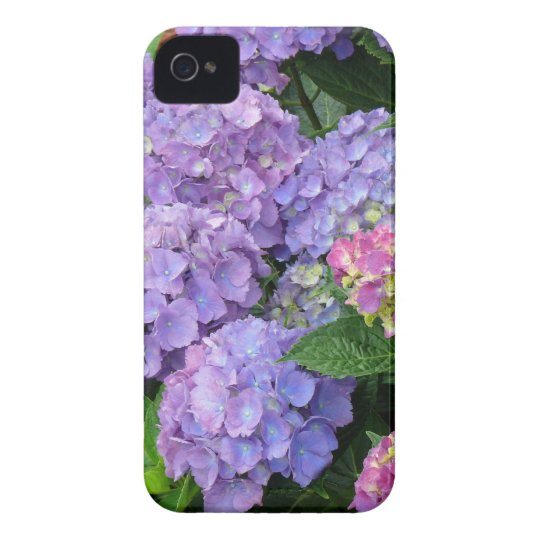 Purple and Pink Hydrangea Flowers iPhone 4 Cover