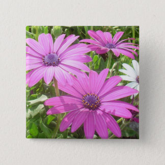 Purple And Pink Tropical Daisy Flower Pinback Button
