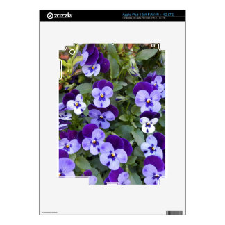 Purple and Violet Pansies Decal For iPad 3