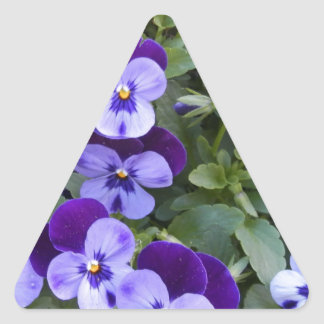 Purple and Violet Pansies Triangle Sticker