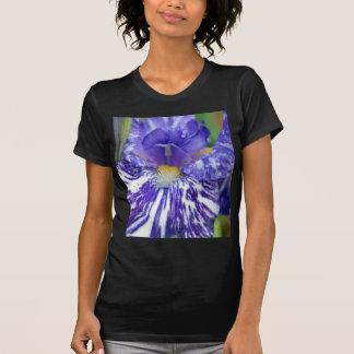 Purple and White Bearded Iris T-shirt
