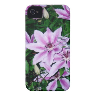 Purple and White Clematis iPhone 4 Case-Mate Cases