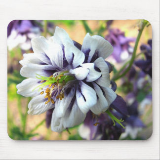 Purple and White Columbine Garden Flower Mouse Pad