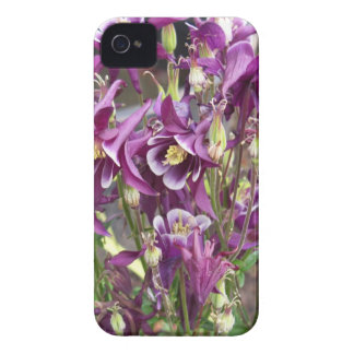 Purple and White Columbines iPhone 4 Cases