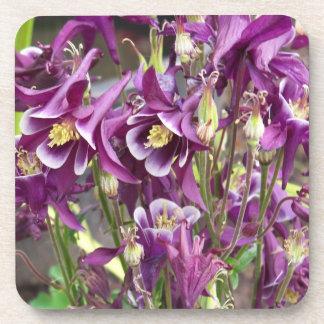 Purple and White Columbines Coasters