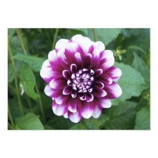 Purple and White Dahlia Card