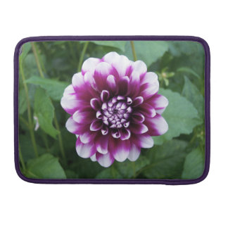 Purple and White Dahlia Sleeve For MacBooks