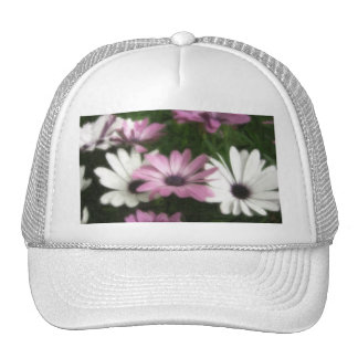 Purple and White Daisies 2 Painterly Hat