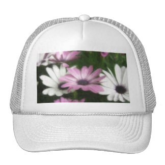 Purple and White Daisies 3 Painterly Hat