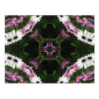 Purple and White Daisies Kaleidoscope 11 Postcard