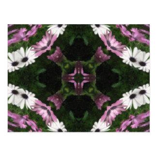 Purple and White Daisies Kaleidoscope 11 Postcard