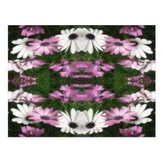 Purple and White Daisies Kaleidoscope 12 Postcard