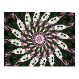 Purple and White Daisies Kaleidoscope 2 Postcard
